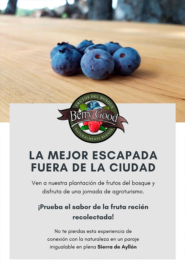 Berrygood Frutos del Bosque Naturalmente buenos Escapada recolecta Temporada 2021